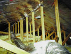 Radiant Barrier Insulation in Florida